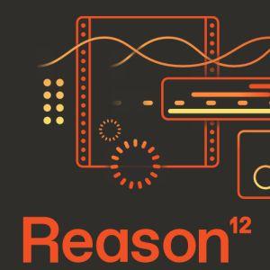 246031 Reason Studios - Reason 12 Upgrade all previous - Perspektive